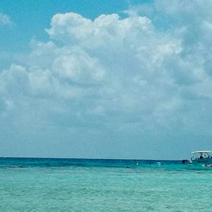 EcoTours boat with you as you snorkel