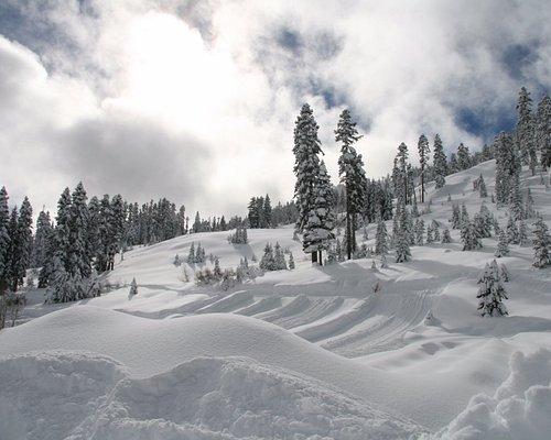 Snowy paradise!