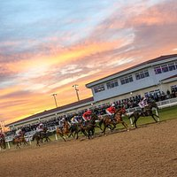 Chelmsford City Racecourse Home Straight