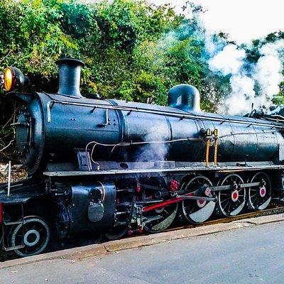 Royal Livingstone Express