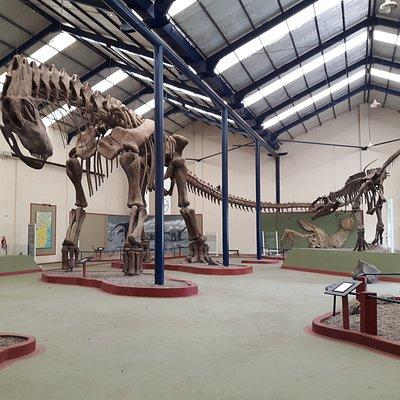 argentinosaurio