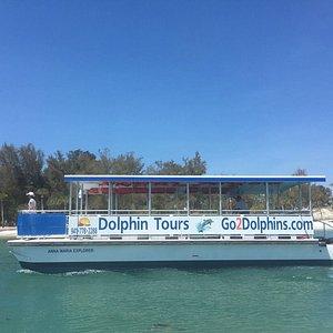 Dolphin Tours on the Anna Maria Explorer