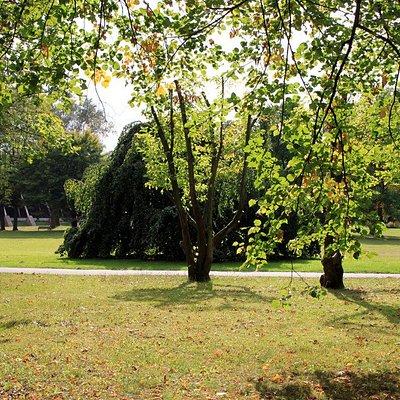 Der Südpark