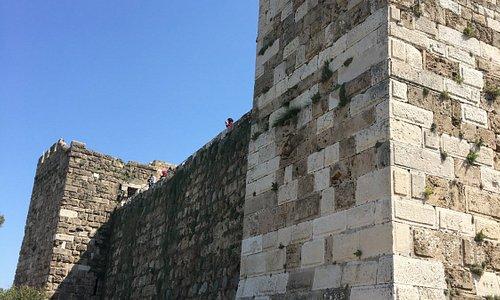 Crusader Castle: exterior detail