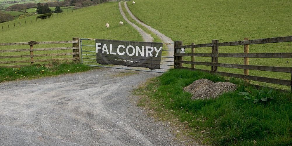 The entrance to the Falconry Experience