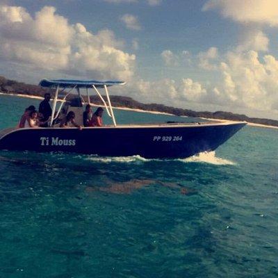 TI MOUSS dans le lagon de Petite Terre avec les dauphins