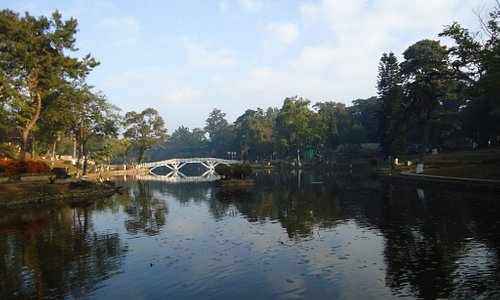 Wooden bridge at to the beauty of the place.