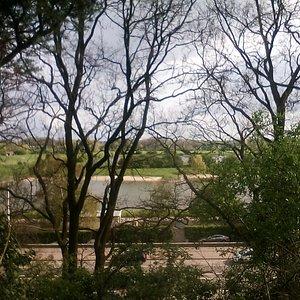 Meinerswijk, seen from Utrechtseweg. Meadows, lakes, birds etc.
