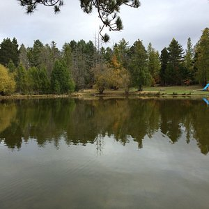 Swimming Dam in autumn.