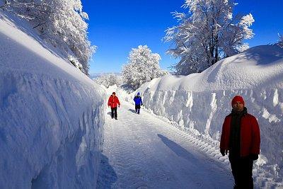 Kartepe bölgesi her yönüyle güzel bir bölge; her mevsim yürüyüşe ve diğer bir çok spor için uygu