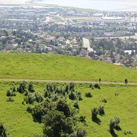 Being above Fremont and the Bay on these long paths through green green hills - priceless!