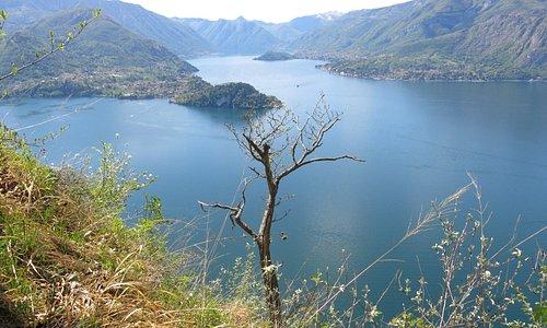 Lago di Como Center