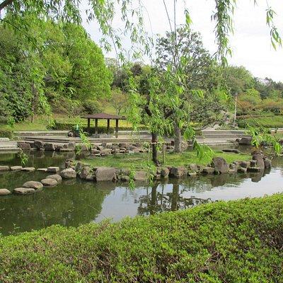Japanese Garden near Iris Garden and Plum Grove