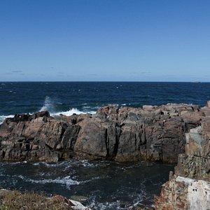 Cape Shore Trail