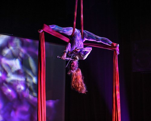 Janice Martin, the world's only aerial violinist