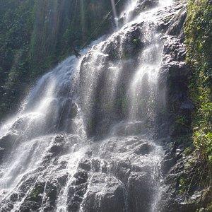 Big Waterfall Rappelling Rainforest Wonders Puerto Rico Nature Adventure