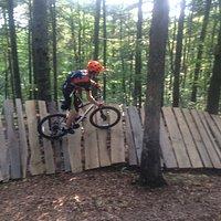 Wood berm on McTwist Trail