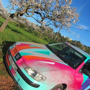 Seat Ibiza in spring season...