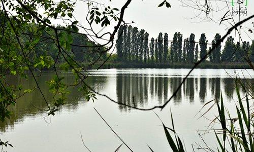 Uno dei laghi dell'oasi.
