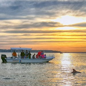 Island Explorer with dolphins and sunset.