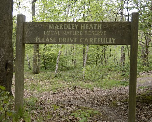 Mardley Heath