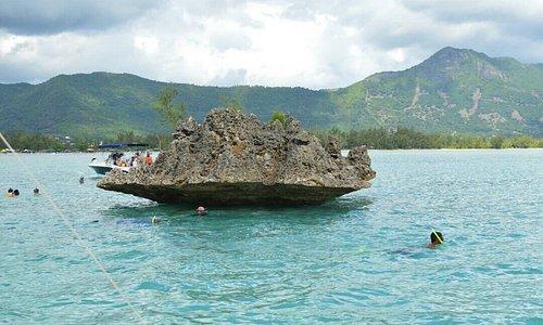 Fantastic Mauritius