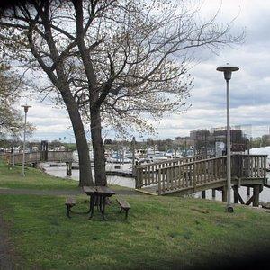 The marina in the island
