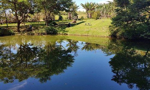 Lago do Sitio Sassafraz