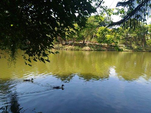 Parque Novo Horizonte