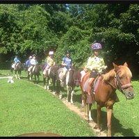 Photos at Sandy Hill Farm