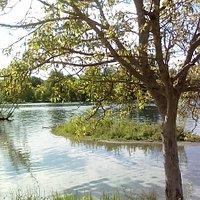 Jardin Garonne