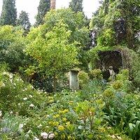 Dans le jardins aux fleurs