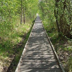 Lattersey Nature Reserve