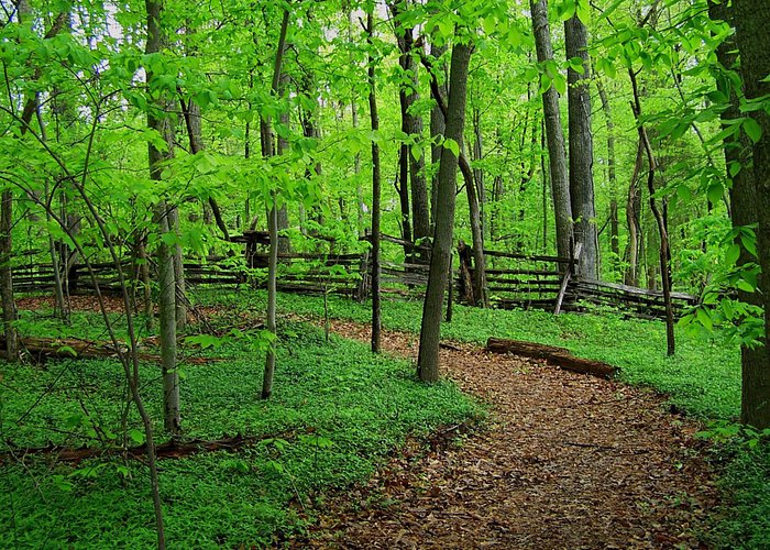 We have over 180 acres, including scenic greenway trails