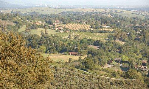 rich Los Altos Hills