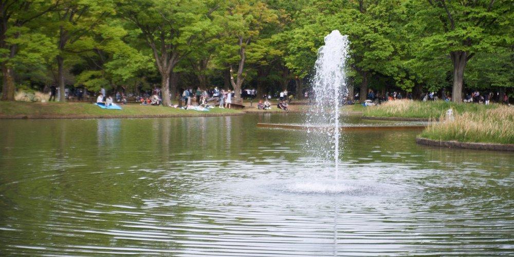 中央あたりにある噴水