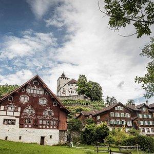 Schlangenhaus und Schloss Werdenberg. Foto: ©Daniel Ammenn