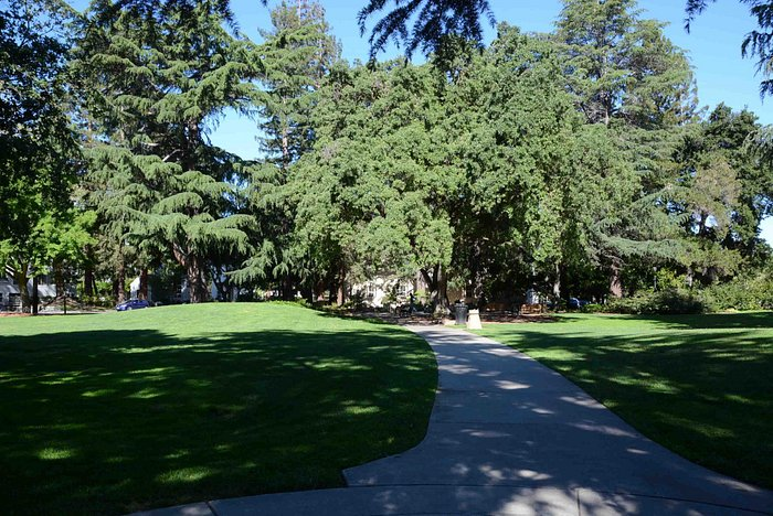 lawns and walkways