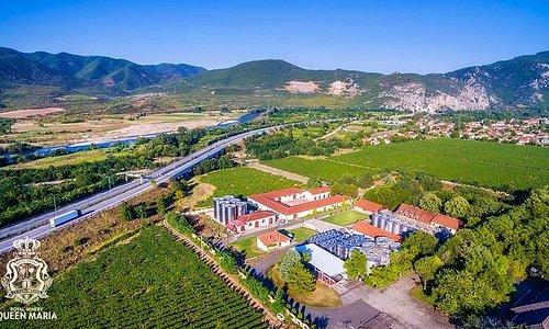 Royal winery Queen Marija view