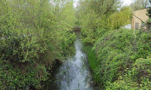 The River Anton has very good views