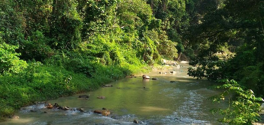 Ampang Receational Forest