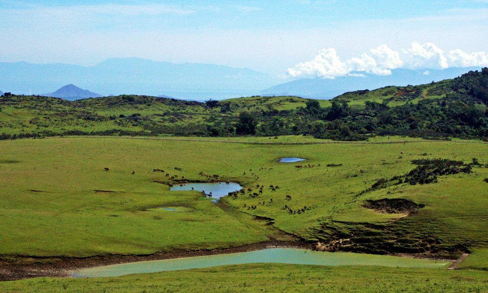 Fulan Fehan is a valley at the foot of Mount Lakaan with a very broad savannas. This valley is a