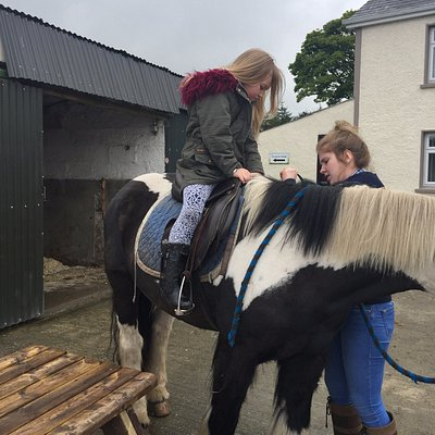 pony trekking long or short walks only £5 or something great value