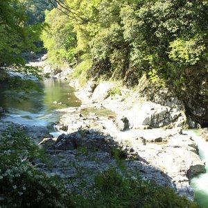 伝統漁が続く鮎滝