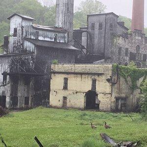 Bourbon history being resurrected