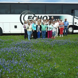 Echo can accommodate senior citizens, disabled and handicapped tourists.