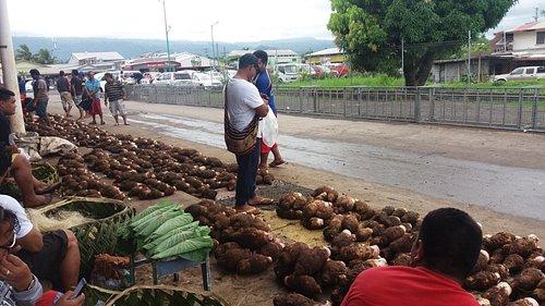 Taro callore at the Fugalei Market.