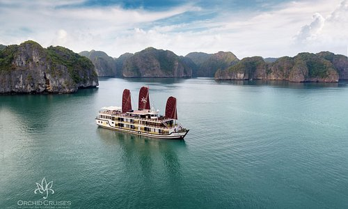 Overview of Orchid Halong Cruise