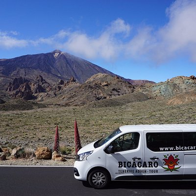 Private Tour Guides in a 9 seats van with maximum comfort