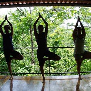 yoga at bird's eye view studio